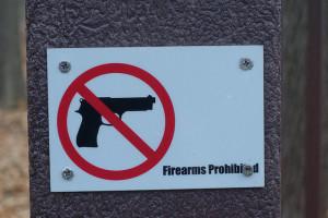 discharging a firearm
